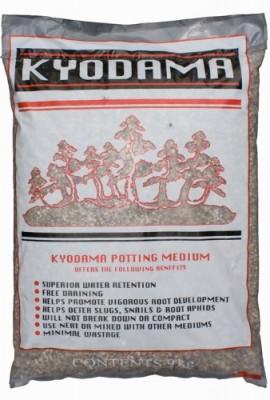 9-kg-kyodama-Bonsa-du-sol-Livraison-Inc-0