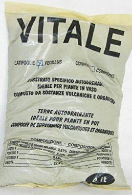 Vital-Substrat-Autodrenante-Feuillus-de-4-Litres-0