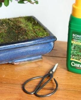 All-Things-bonsai-kit-dentretien-des-ciseaux-et-des-aliments-pour-animaux-0