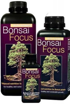 Bonsa-Focus-100-ml-York-Bonsai-Engrais-liquide-0