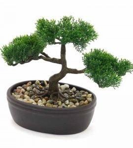 Bonsai-Pot-Ceramique-H23cm-0