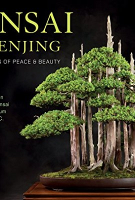 Bonsai-and-Penjing-Ambassadors-of-Peace-Beauty-0