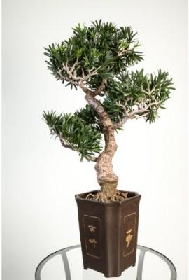 Bonsai-podocarpus-artificiel-en-pot-313-feuilles-80-cm-rsistant-aux-intempries-bonsai-synthtique-arbre-artificiel-artplants-0