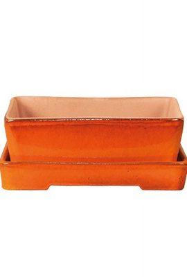 Herstera-11301030-Pot-pour-bonsais-0