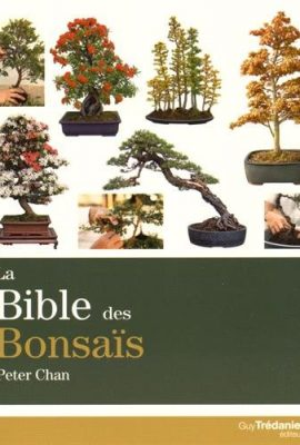La-bible-des-bonsas-0
