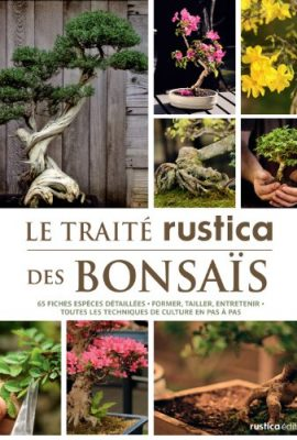 Le-trait-rustica-des-bonsas-0