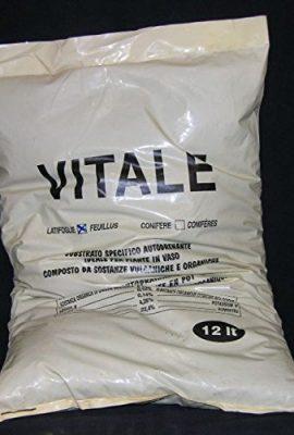Vital-Substrat-Autodrenante-Feuillus-de-12-Litres-0