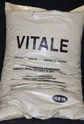 Vital-substrat-Autodrenante-avec-lapillo-conifres-de-12-litres-0